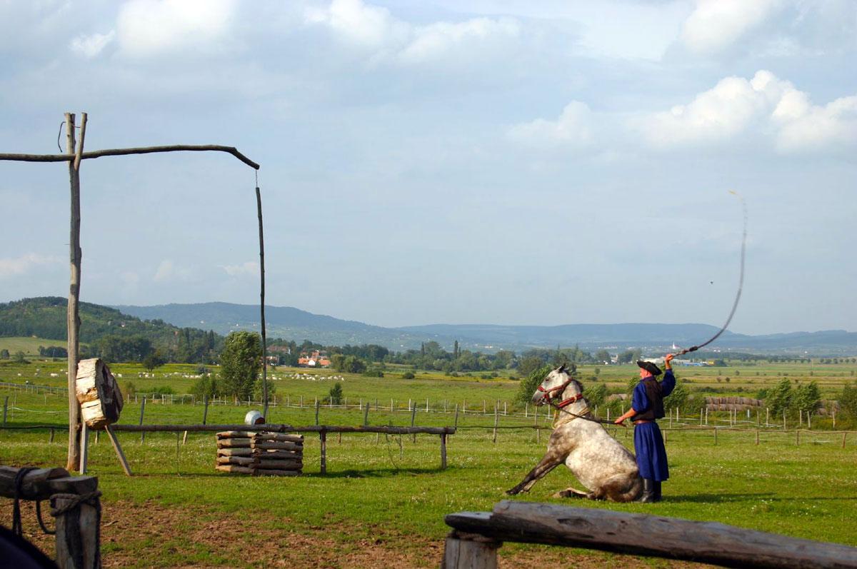 itinero.eu visite_equestre